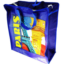 Luggage Shopping Bag